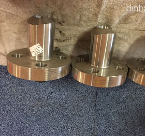 317L Stainless Steel Nipo Flange