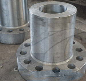 JIS SUS 317 Long Weld Neck Flanges