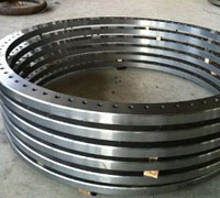 Alloy Steel Awwa C207 Class F Flanges