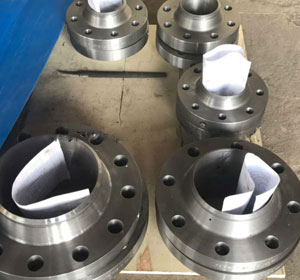 ASTM A694 F42 Steel Forged Flanges