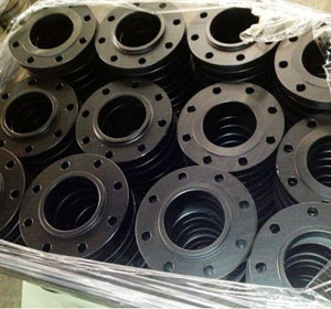 Carbon Steel Raised Face Flange