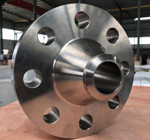 Stainless Steel API Flanges Material