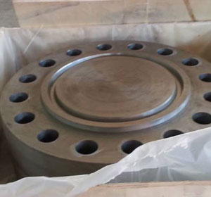 Stainless Steel Blind Flange Manufacturer In India