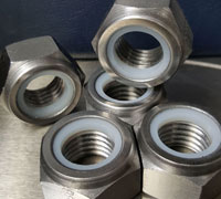 Stainless Steel Nylon Insert Nuts