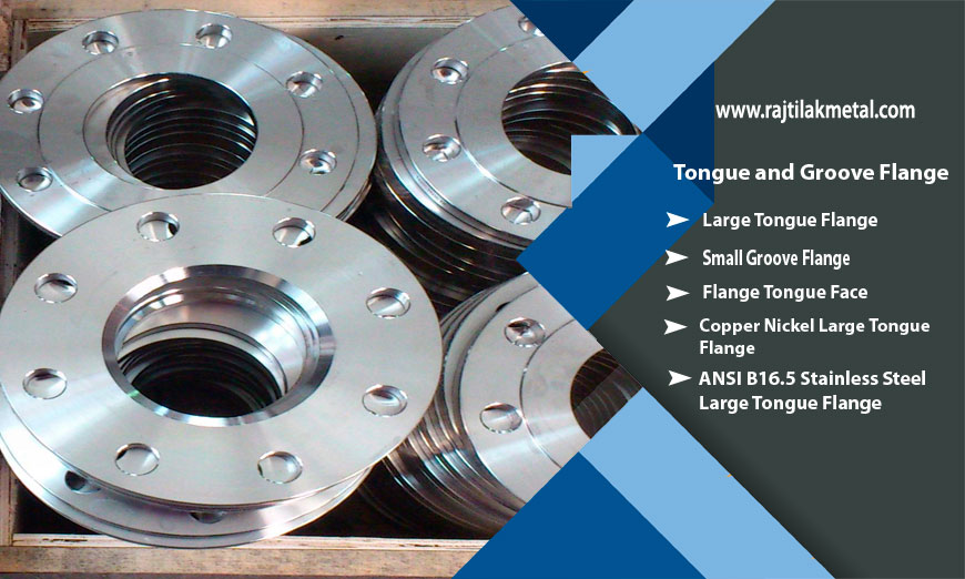 Tongue and Groove Flanges